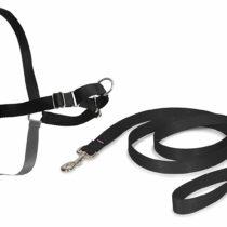 PETSAFE Pet Safe Easy Walk Dog Harness, Medium, Black