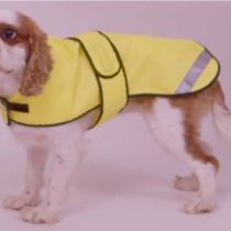 Cosipet Safety Coat, 12-inch/30 cm, Yellow