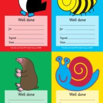 A6 Multi Image Praise pad: 64 'Well Done' Reward Notes