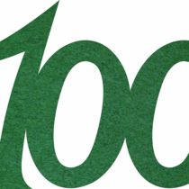 'Petra's Craft Felt News 25x Anniversary Number 100Confetti, Fliz, Dark Green, 18x 12x 3cm